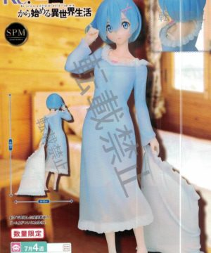 Re Zero REM Nightwear