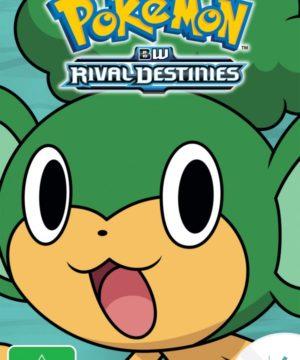 Pokemon Season 15 DVD